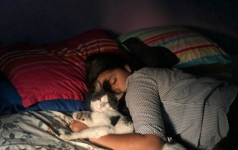 Jarelly Diaz is grateful for having a pet that brings her calm